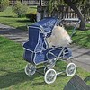 """London"" re-badged - 1976 Steelcraft Consort pram in ""Navy Weavex"" vinyl. Amazing condition!"