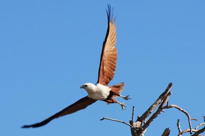 Talbot Bay, NW Australia, 2008