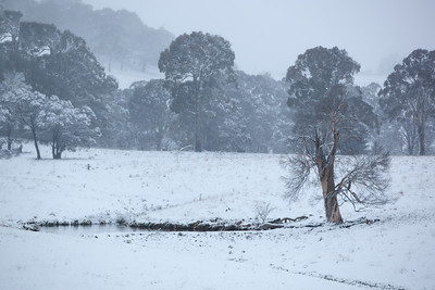 Snow event at Oberon, NSW on the 17th/18th August 2012