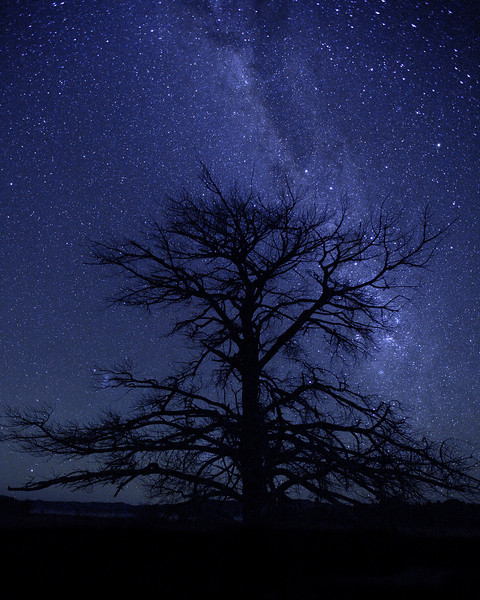 Inverell Night Sky