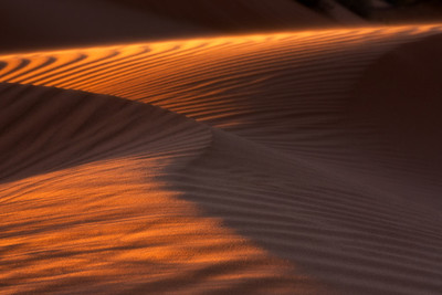 Midnight Dunes