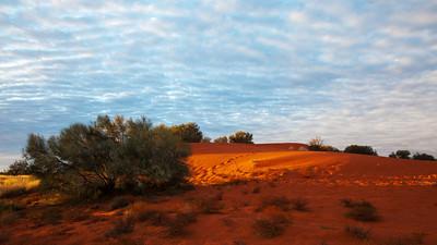 Windorah Sand Dunes