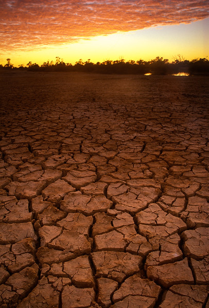 Drought Dawning