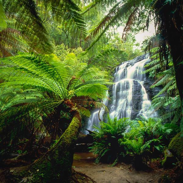 falls near Lorne005