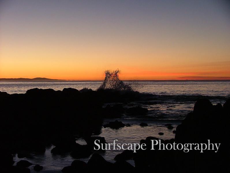 Cape Conran Coastal Park, Victoria