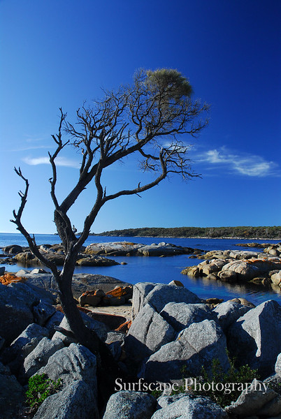 Binalong Bay,Tasmania