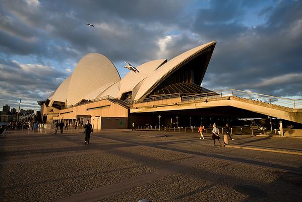 Sydney Oper im Abendlicht