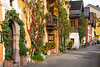 A street with decorative vines and buildings in Hallstatt, Austria, Europe.