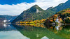 Reflections of fall foliage color in the Grundisee, Austria, Europe.