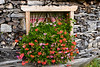 A wood pile, flowers and a window near the village of Muhlbach, Austria, Europe.