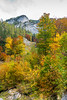 Fall foliage color in the mountains near Bad Aussee, Austria, Europe.