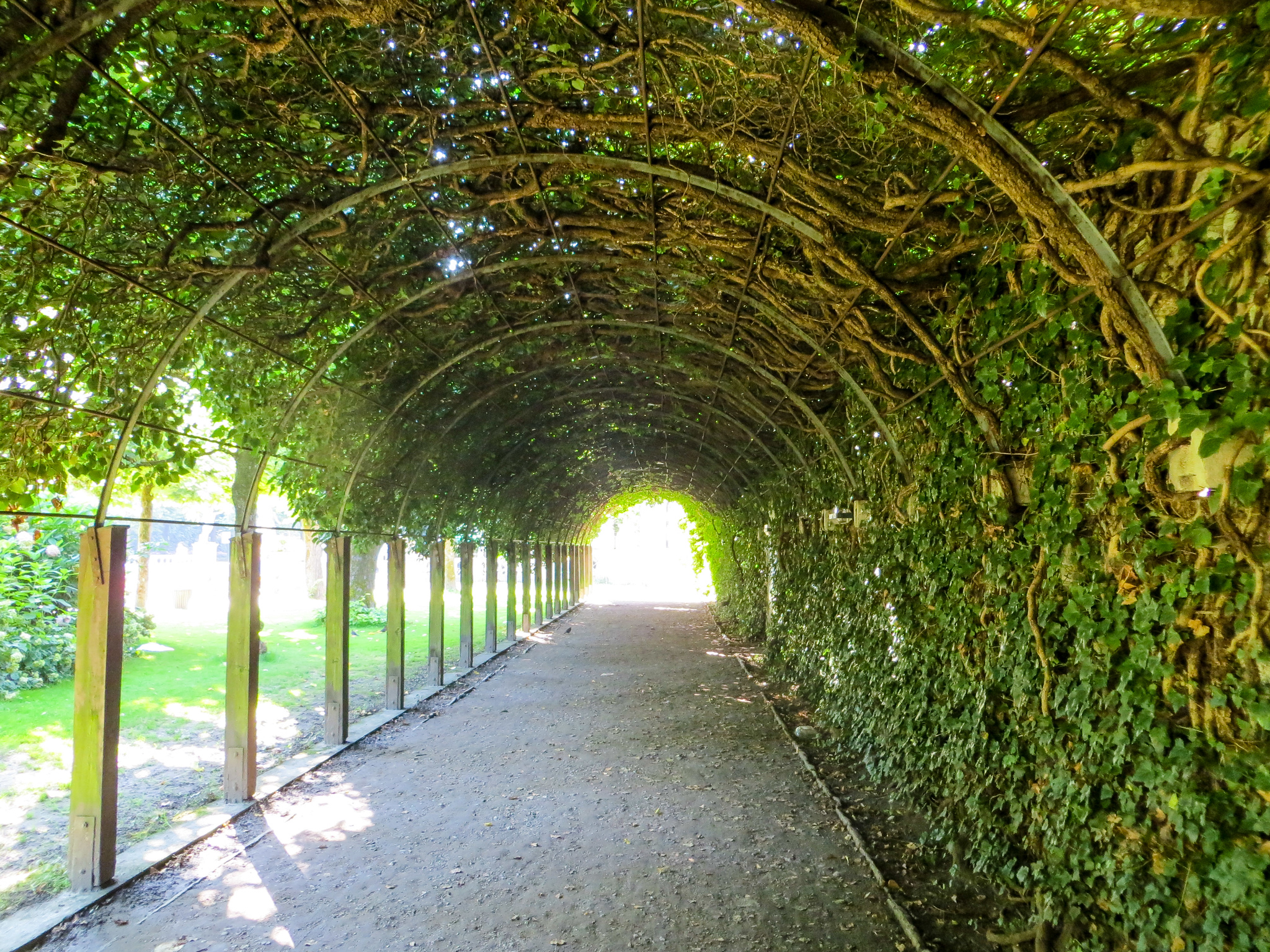 backpacking europe routes 2 weeks will take you to this green tunnel in salzburg