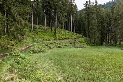 Hochmoor-Salzburgerland_2830