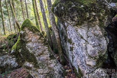 Saalachtal-Wander-Golf_0156
