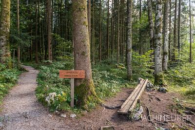 Saalachtal-Wander-Golf_0149
