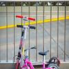 Popular Form of Transportation