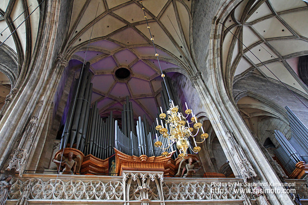 Pipe Organ at Saint Stephen's Cathedral
