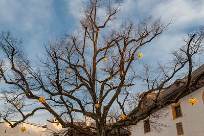 Tree Stars - Hohensalzburg Fortress