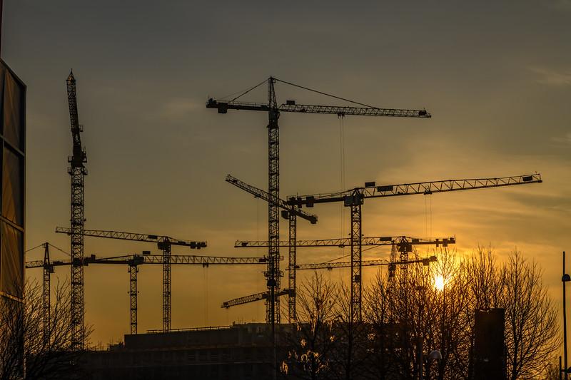 Vienna Dawn