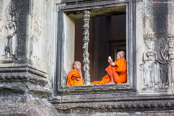 Buddhas Wisdom
