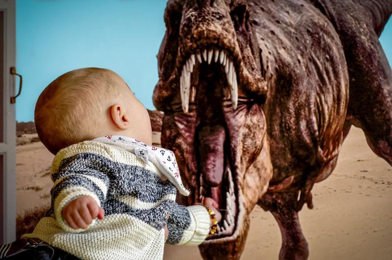 Sterling & Dinosaur