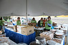 volunteers_7483