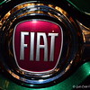 """FIAT"" Logo<br /> <br /> ""Never have more children than you have car windows."" ~  Erma Bombeck"