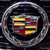 """CADILLAC"" Logo<br /> <br /> ""Motor Trend's Memphis International Auto Show"" 2014<br /> Memphis, TN"