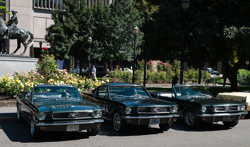 July 30, 2011 - Ford<br /> 1966 Mustang Convertible, 1966 Mustang 2+2 Fastback and 1966 Mustang Convertible GT - all in Ford's Ivy Green (Color code R)