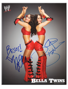 Bella Twins (Brie & Nikki) Autographed 2010 WWE Promo Photo