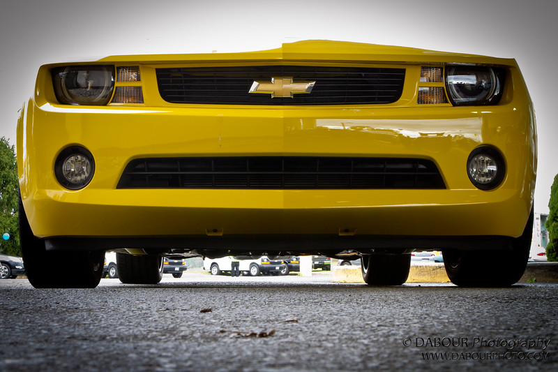 Chevy Camaro Bumble bee