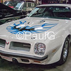 1974 Pontiac Firebird Trans Am L75