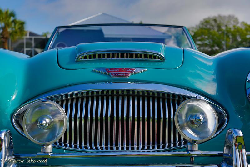Austin Healy-173