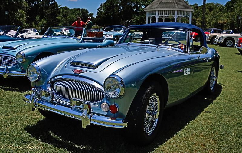 Austin Healy-1250