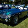 Austin Healy-964