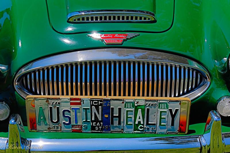 Austin Healy-1315