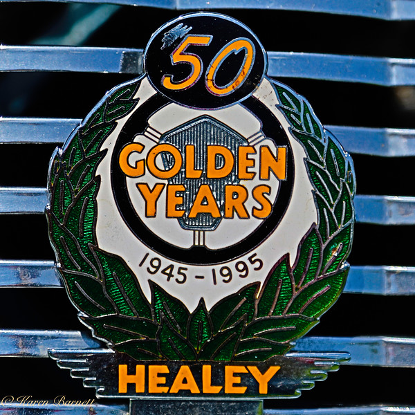 Austin Healy-701
