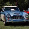 Austin Healy-536