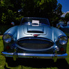 Austin Healy-1004
