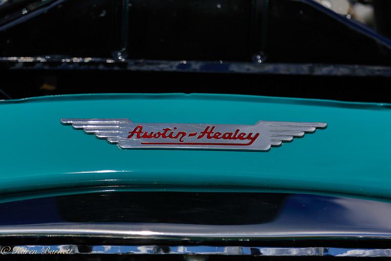 Austin Healy-451