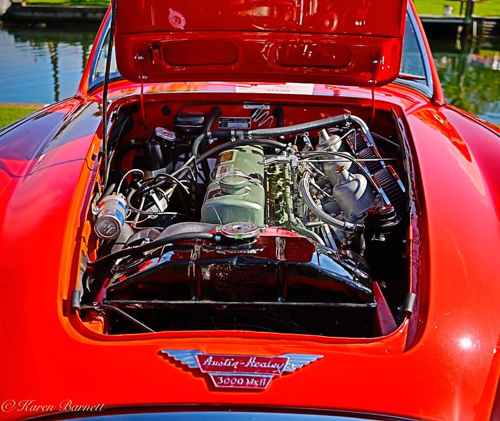 Austin Healy-217