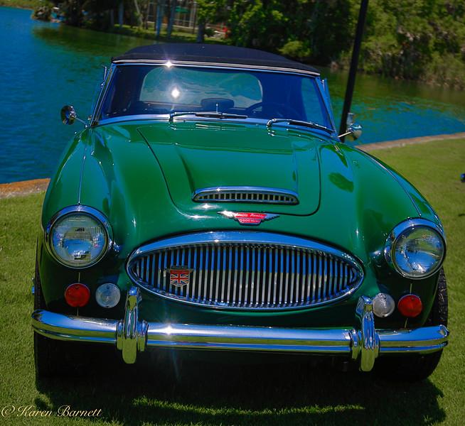 Austin Healy-1094