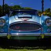 Austin Healy-1114