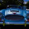 Austin Healy-1020