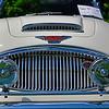 Austin Healy-625