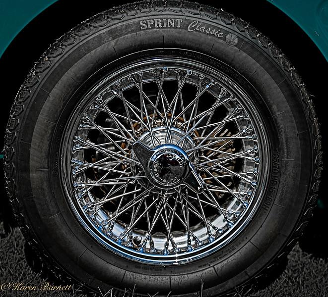 Austin Healy-197