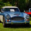 Austin Healy-545