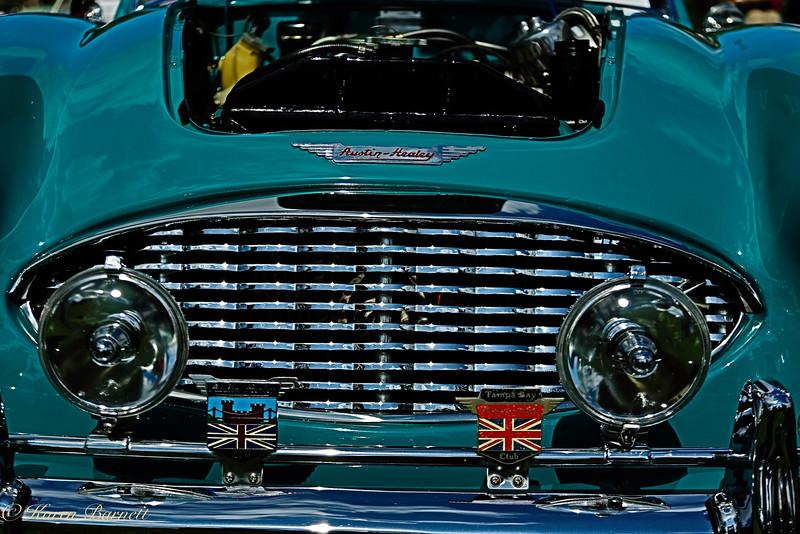 Austin Healy-390