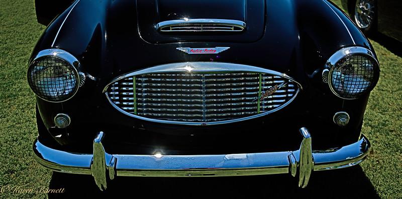 Austin Healy-1435