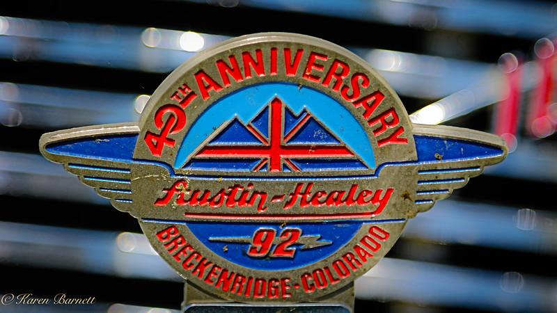 Austin Healy-689